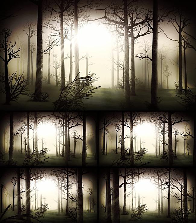 动态视频素材 > 黑暗森林背景视频素材  关键词: 相框 遮罩 通道 背景