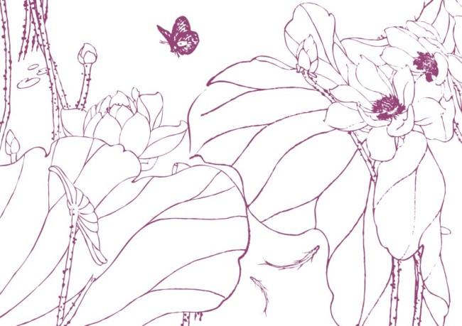 简笔画 线条画 美工画 手描画 插画 画 工笔画 国画 黑白画 古画 荷花图片