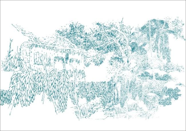 玉米林农村小屋 简笔画