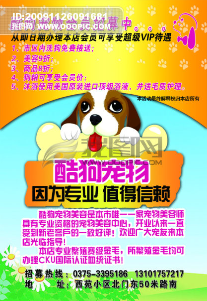 主页 原创专区 海报设计|宣传广告设计 宣传单|彩页|dm > 宠物店 宣传