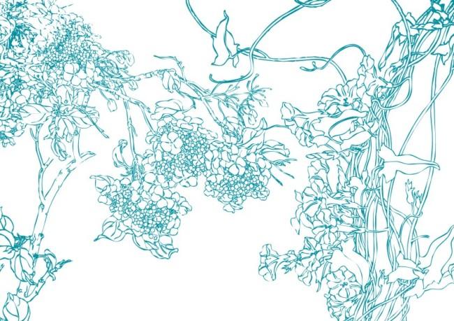 商业插画 > 清夏花奇-线条画  娇花 植物 珍花 花叶 绿叶 叶子 枝叶