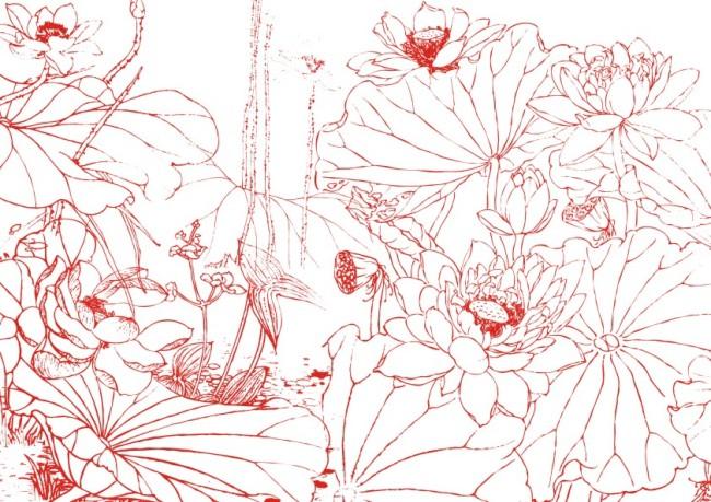 【cdr】红莲子-素描画_图片编号:wli10522673_花纹
