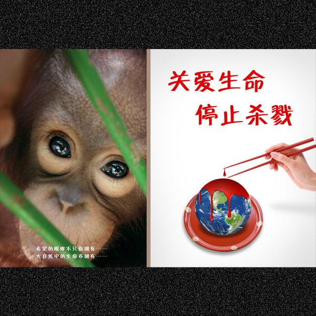 【psd】保护动物公益海报