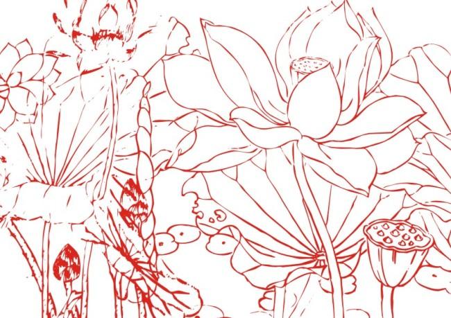 线条画 美工画 手描画 插画 画 工笔画 国画 白描图 笔画图 荷花 莲花