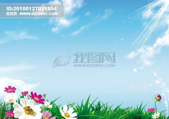 叶 叶子 叶片 宣传海报背景 宣传海报背景素材 花朵宣传栏背景 蓝天宣