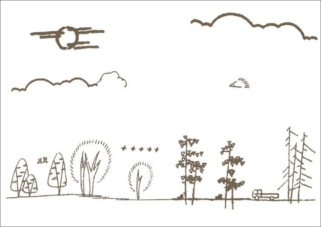 公路边绿化-手绘画图片