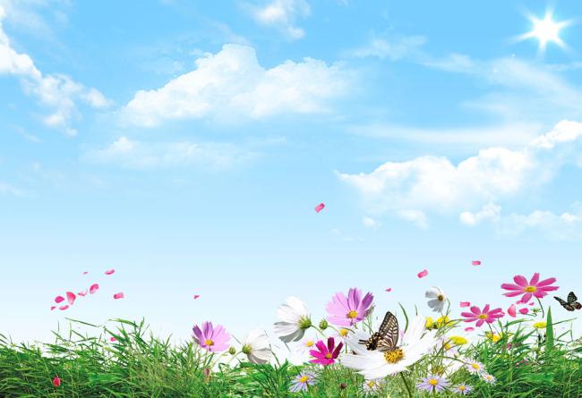 蓝天白云海报背景 草地鲜花 展板海报背景图片 蝴蝶 风景设计图片
