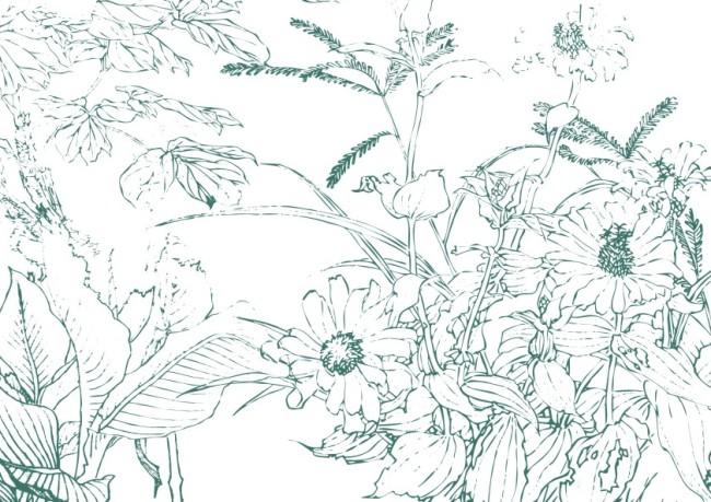 主页 原创专区 插画|素材|元素 花纹插画 > 绿野鲜花小草工笔画