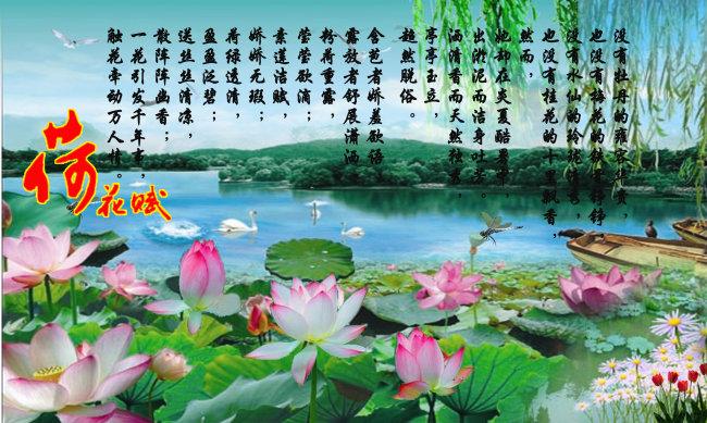 荷叶 诗 诗句 山水 风景画 风景 风景素材 风景画 画 图片 说明:荷花