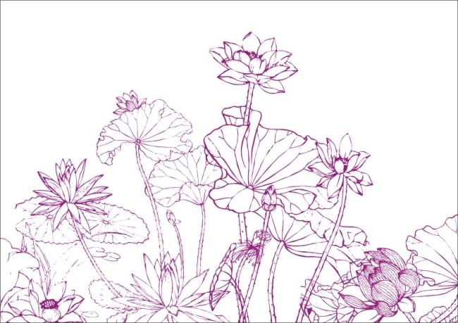【cdr】荷叶飘香-工笔画