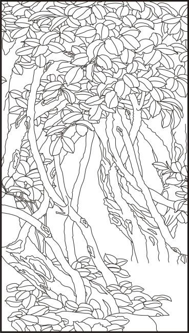 各种手绘树叶线描