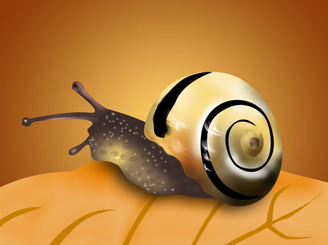 【psd】可爱的小蜗牛