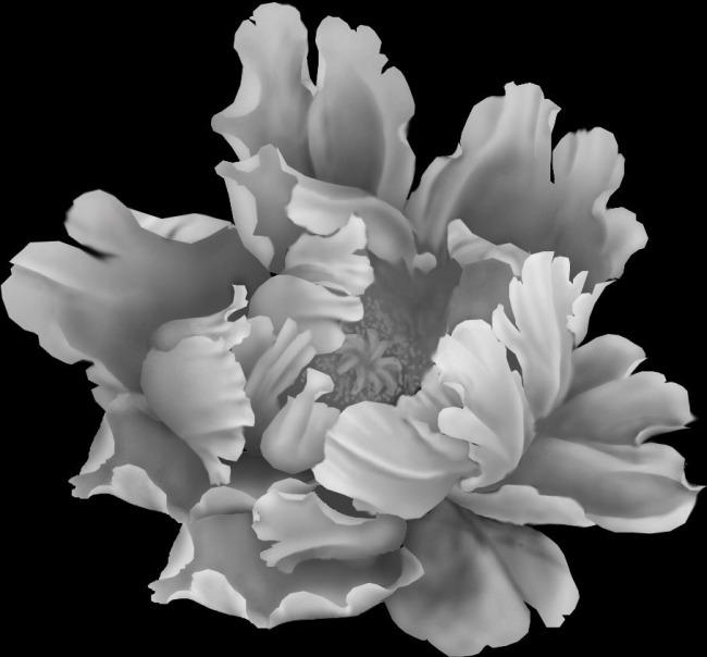 【psd】牡丹花灰度图精雕图模板