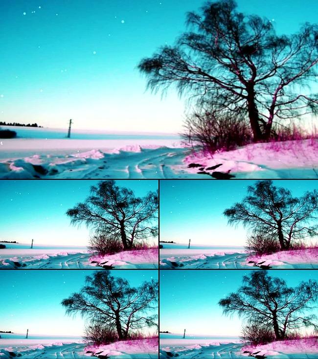 【】唯美风景山水风光花开led视频背景素材