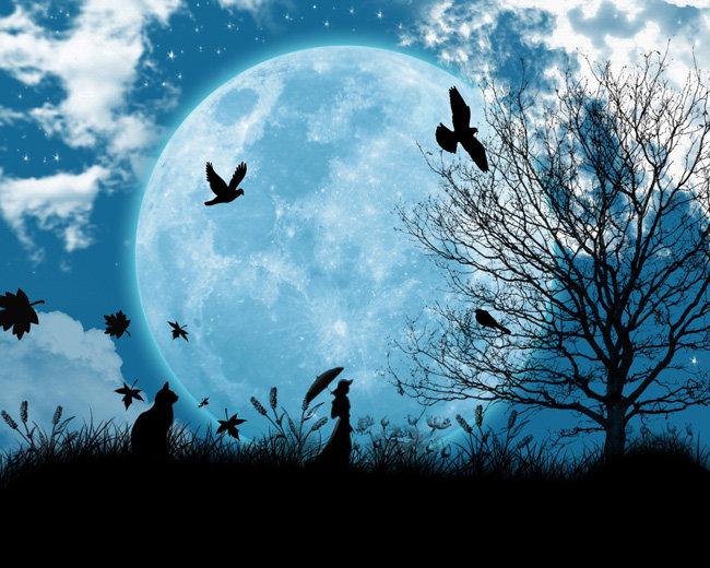 關鍵詞: 月亮 夜空 云彩 月球 樹 兔子 鴿子 小鳥 楓葉 天空 美女