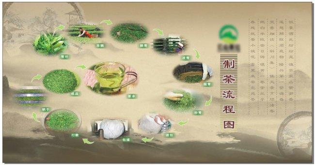 【cdr】茶叶制作流程图展板设计模板
