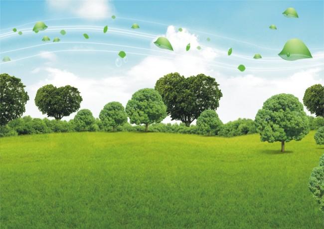 环保大树简笔画