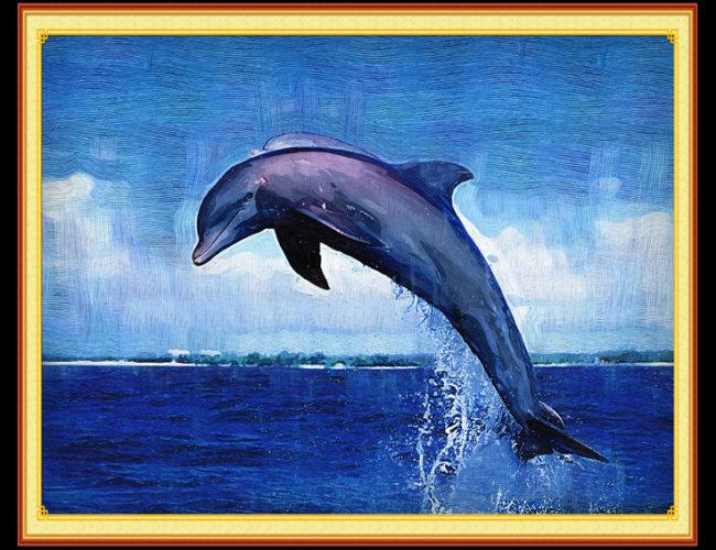 可爱海豚动物大全