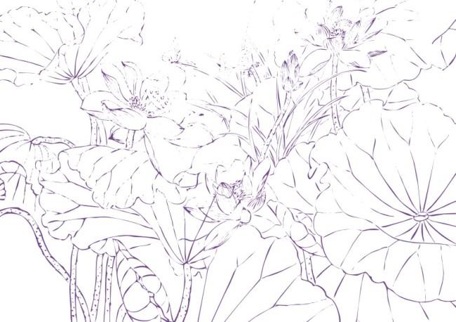 【cdr】圣洁荷莲-插画_图片编号:wli10445562_花纹