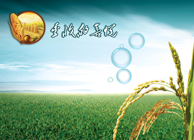 绿色 绿色背景 蓝天 白云 新农村 企业展板 文化展板 说明:丰收的喜悦