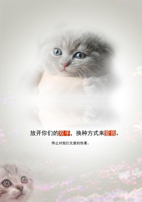 【psd】保护动物招贴海报