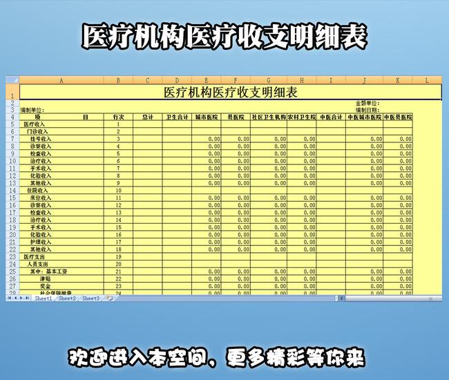 收入支出明细表模板_现金收支明细表模板_医疗收入费用明细表
