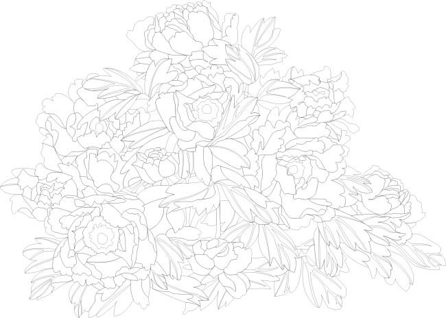 【cdr】牡丹线描矢量图1