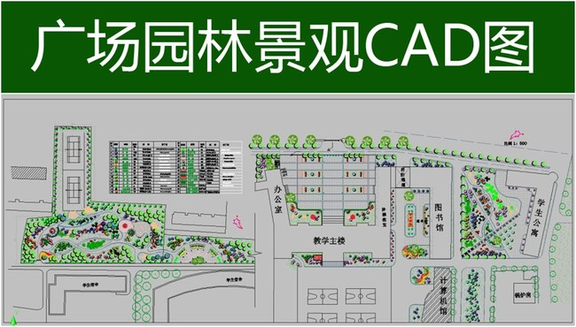 校园广场绿化设计cad平面图