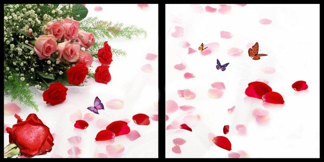 无框画设计素材 无框画设计模板 室内装饰画 玫瑰花 花瓣 蝴蝶 说明