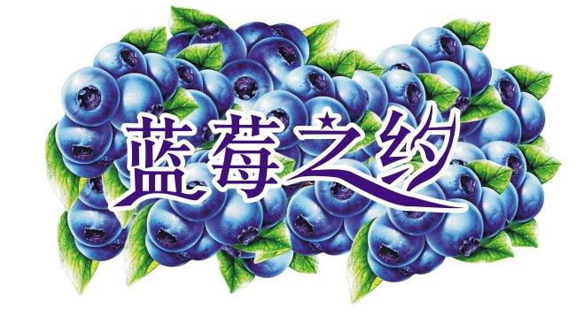 【cdr】蓝莓之约_图片编号:wli1022819_其他_海报设计