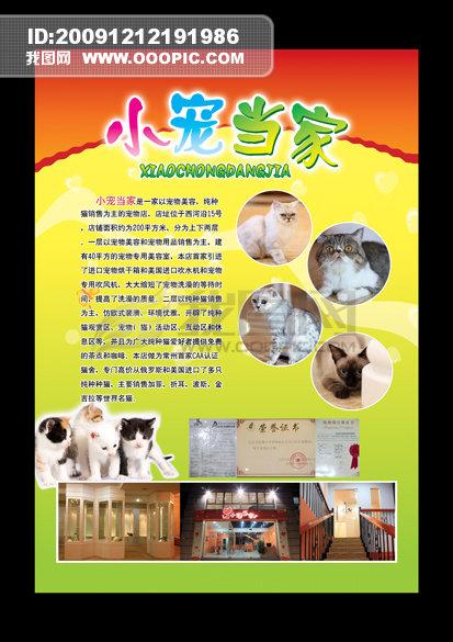 主页 原创专区 海报设计|宣传广告设计 宣传单|彩页|dm > 宠物医院