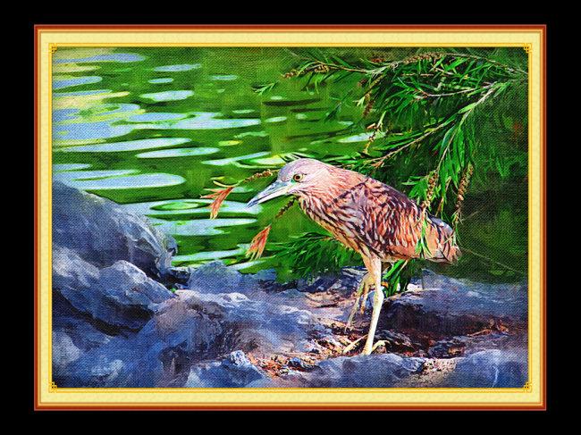意境 风景画 风景油画 石头 湖边 水边 水边石头 说明:小鸟捕食油画