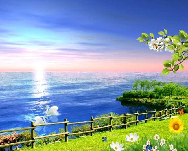 【avi】春天大自然风景视频