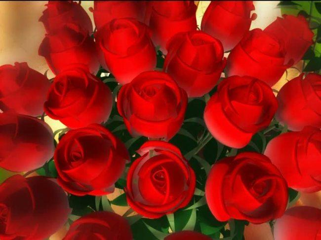 【mov】红色玫瑰花led舞台背景素材