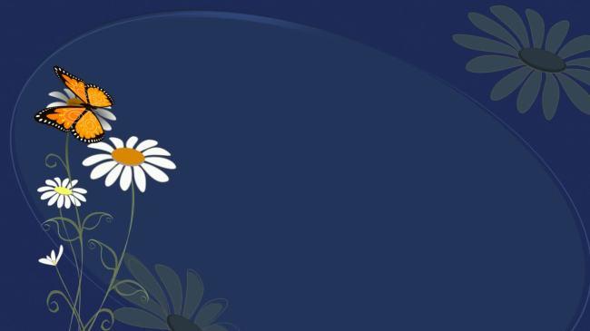 花朵 蝴蝶 小花 可爱 唯美 漂亮 云朵 清新 婚礼 片头 led大舞台