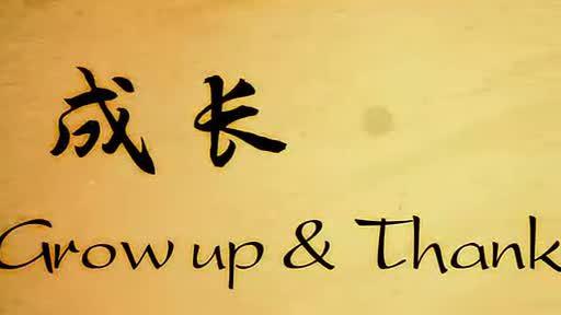 中国我爱你,就像孩子爱他的母亲,这是那首歌的歌词?