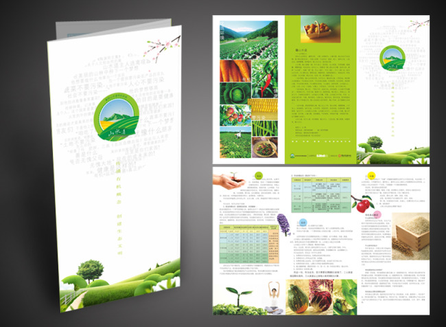 主页 原创专区 海报设计|宣传广告设计 折页设计模板 > 生态有机农场