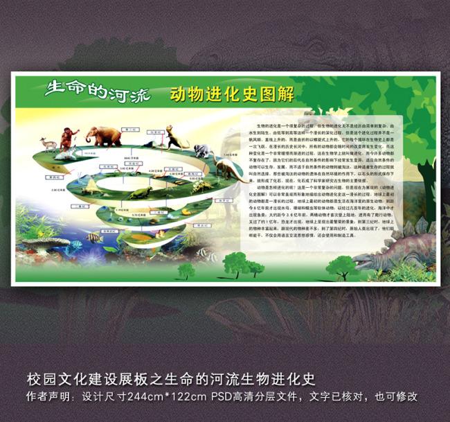 【psd】校园文化建设展板之生命的河流生物进化史