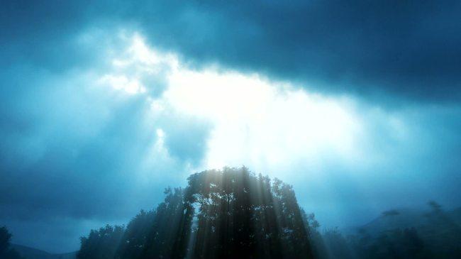 蓝色 透过 云层 阳光 大树 森林 云彩 超高清 视频 背景 素材 舞台