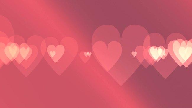 【mov】唯美动感爱心婚庆心形情人节超高清视频素材图片