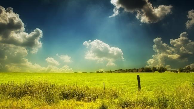 【jpg】大草原风景 油画