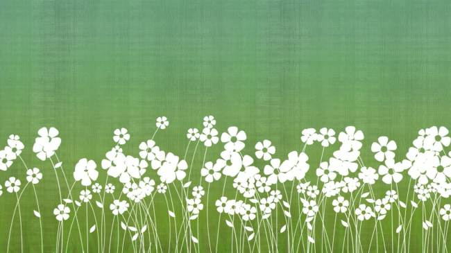 【mov】白色小花绿色清新背景素材