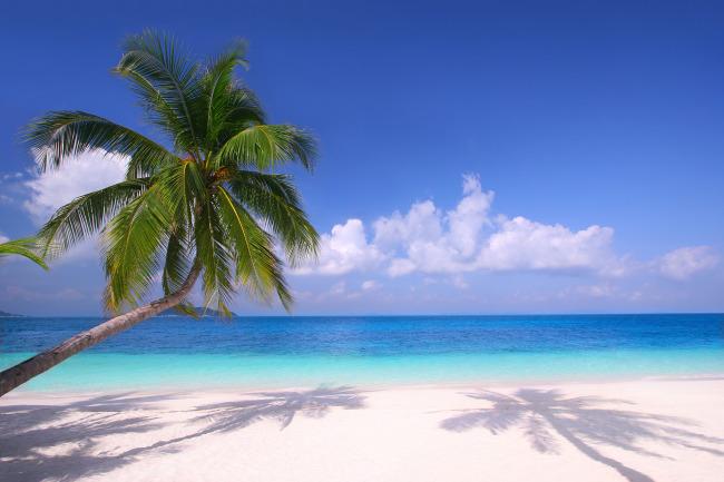 关键词: 海边 沙滩 椰子树 蓝天 白云 倒影 大海 自然景观 自然风景