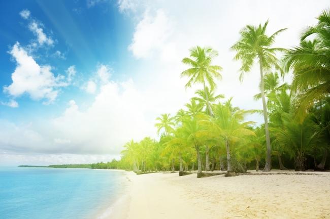 其它模板 其他模板 > 唯美海边 沙滩 椰子树  关键词: 海南风景 树木
