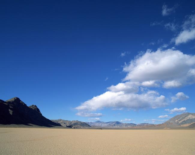 波纹 芦苇 蓝天 白云 沙生植物 曲线 沙漠景观 自然风景 生物世界