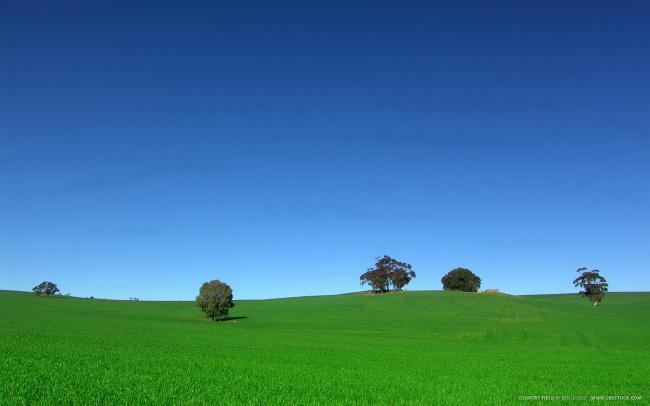 其他模板 > 草原 草地 树木 蓝天  关键词: 野外风景 乡间 天空 绿地