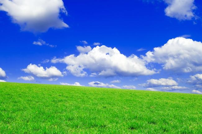 关键词: 绿色 植物 草地 蓝天白云 生态 环境 自然风光 风景 自然
