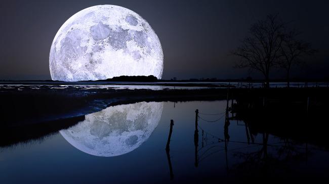云层 天空 树木 景色 湖泊 池塘 月光 月亮 自然景观 自然风景 背景