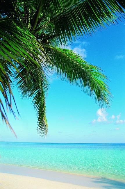 关键词: 海边 沙滩 大海 海边风景 蓝天白云 水 高清图片 阳光 沙滩
