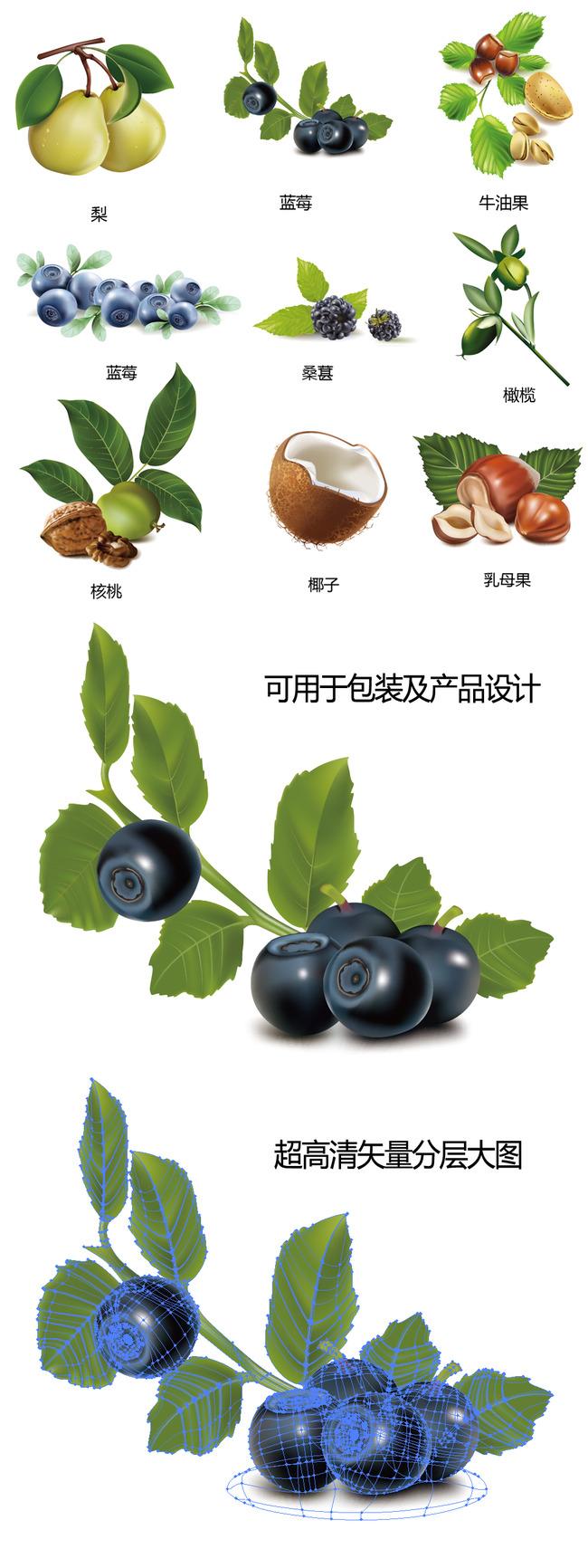常见水果干果矢量图  关键词: 高清 水果 干果 梨 蓝莓 牛油果 乳木果